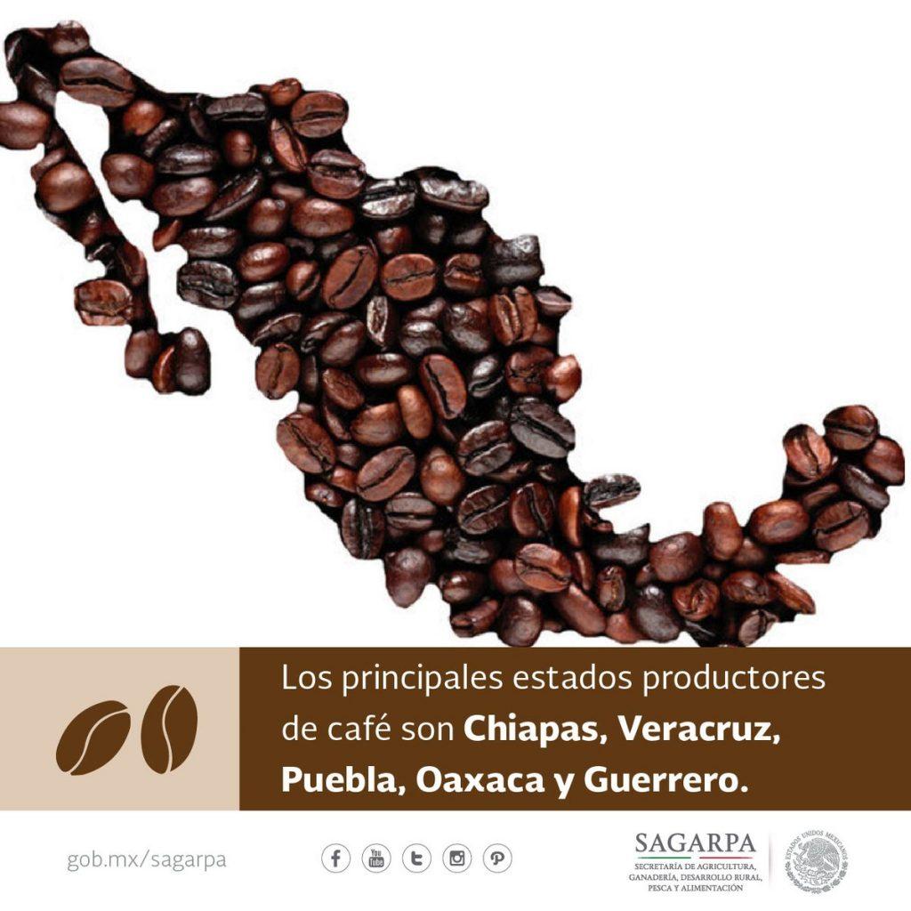 DIA INTERNACIONAL DEL CAFE, SIGMARADIO